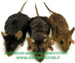 Malattie causate da Ratti e Topi