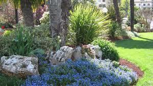 Servizi manutenzione e gestione aree verdi, parchi, giardini, aiuole Lecce