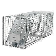 Trappole per la cattura e allontanamento di cani gatti e for Trappola piccioni