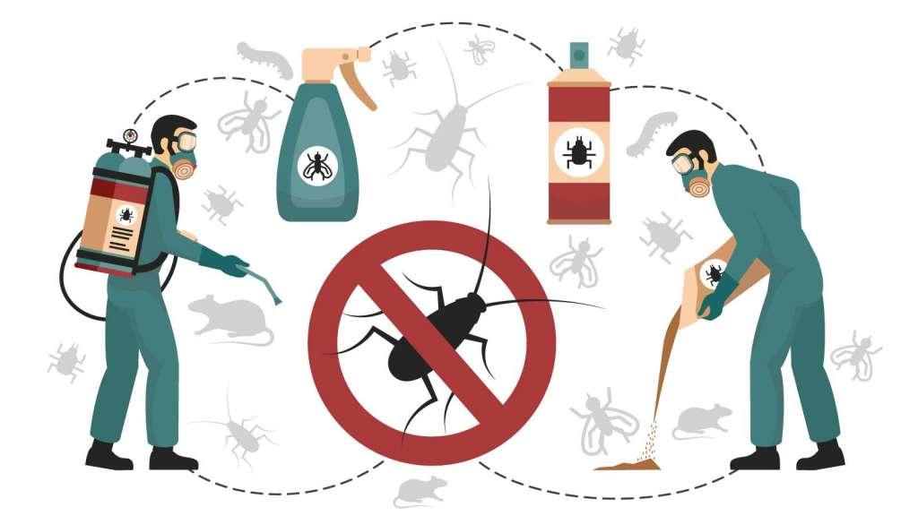 Come uccidere gli scarafaggi