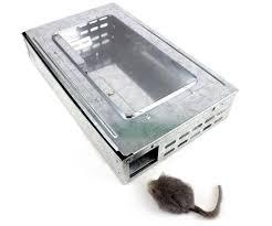 Trappola per topi conforme HACCP