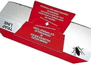 Trappole per monitoraggio scarafaggi